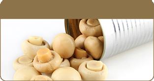 蘑菇罐头/野生蘑菇
