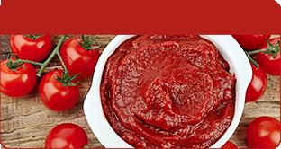 Tomato Paste / Ketchup